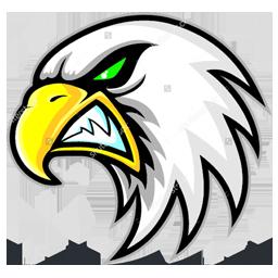 Download 41 Foto Gambar Burung Elang Untuk Logo HD Terbaik Free