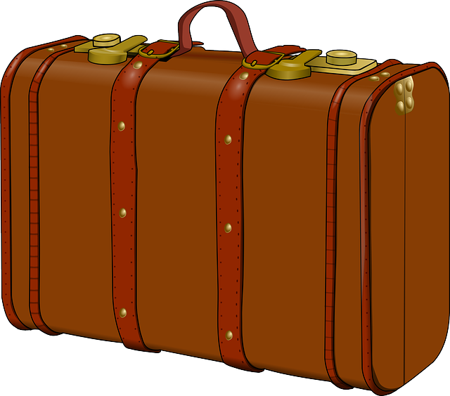 luggage suitcase old travel vector graphic pixabay #35109