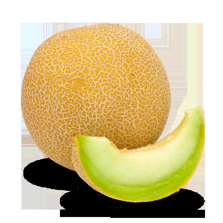 melon png images gambar melon gambar buah melon clipart images free transparent png logos gambar buah melon clipart images