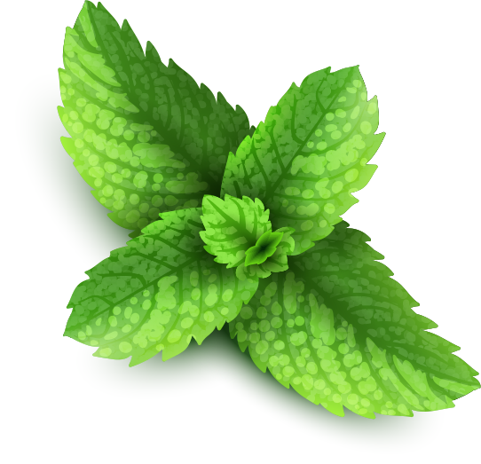 mint png images are download