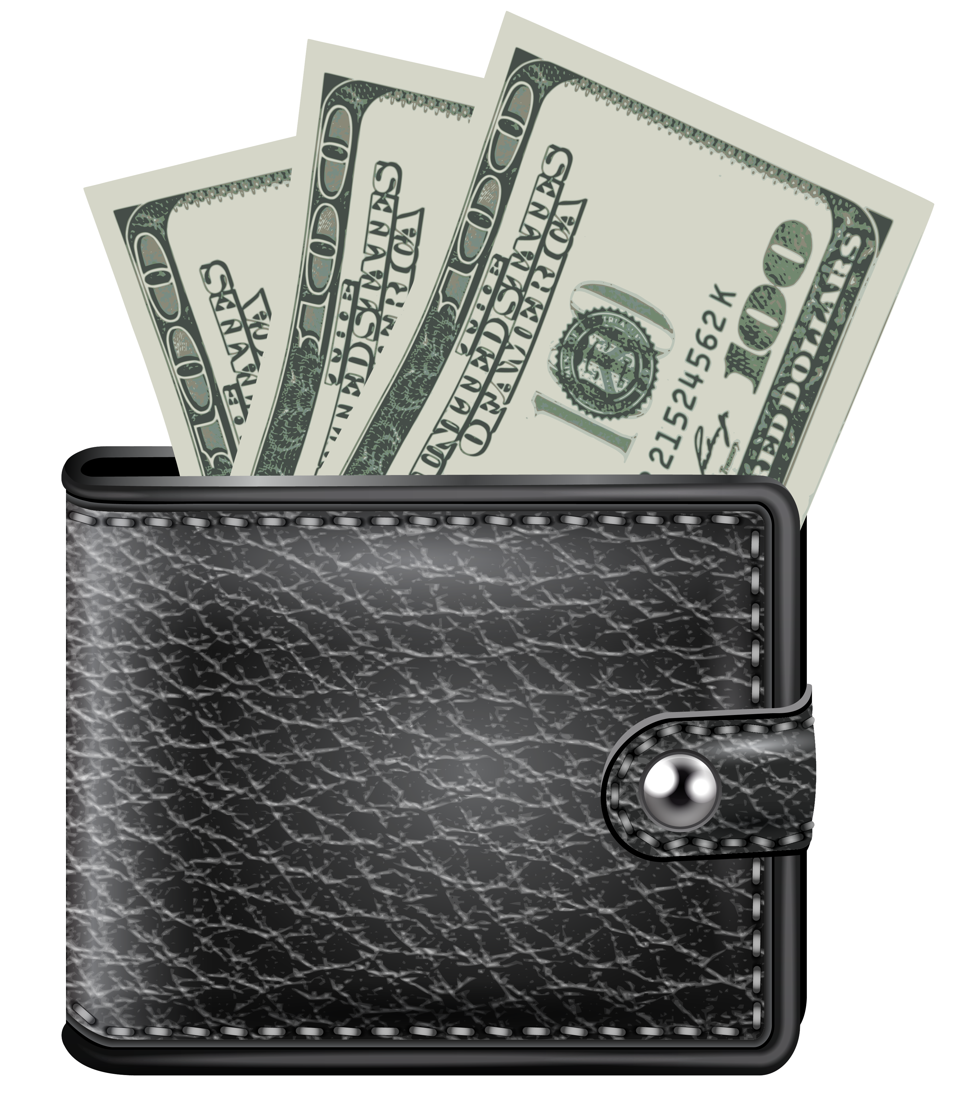 money wallet dollar image money pictures download #8333