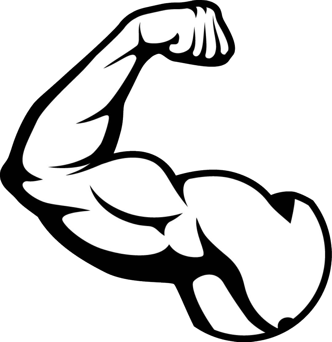 muscles, muscle png image purepng transparent png image library #29581
