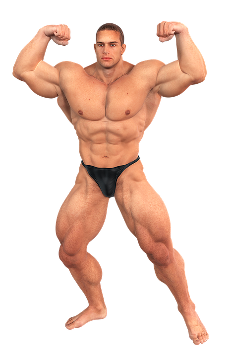 muscles, musculalr man workout png musculalr man workout transparent images pngio #29614