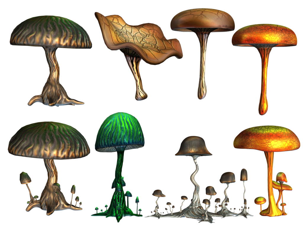 mushrooms roy3d deviantart #9076