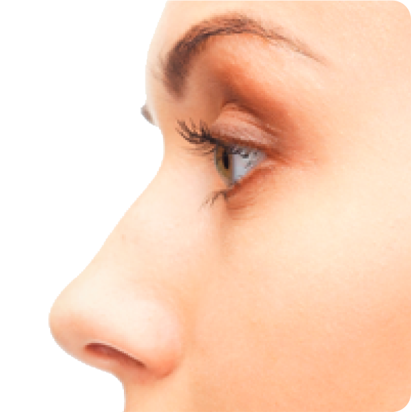 download nose png transparent for designing projects #36853