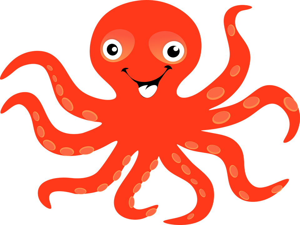 octopus clipart gambar pencil and color octopus #35889
