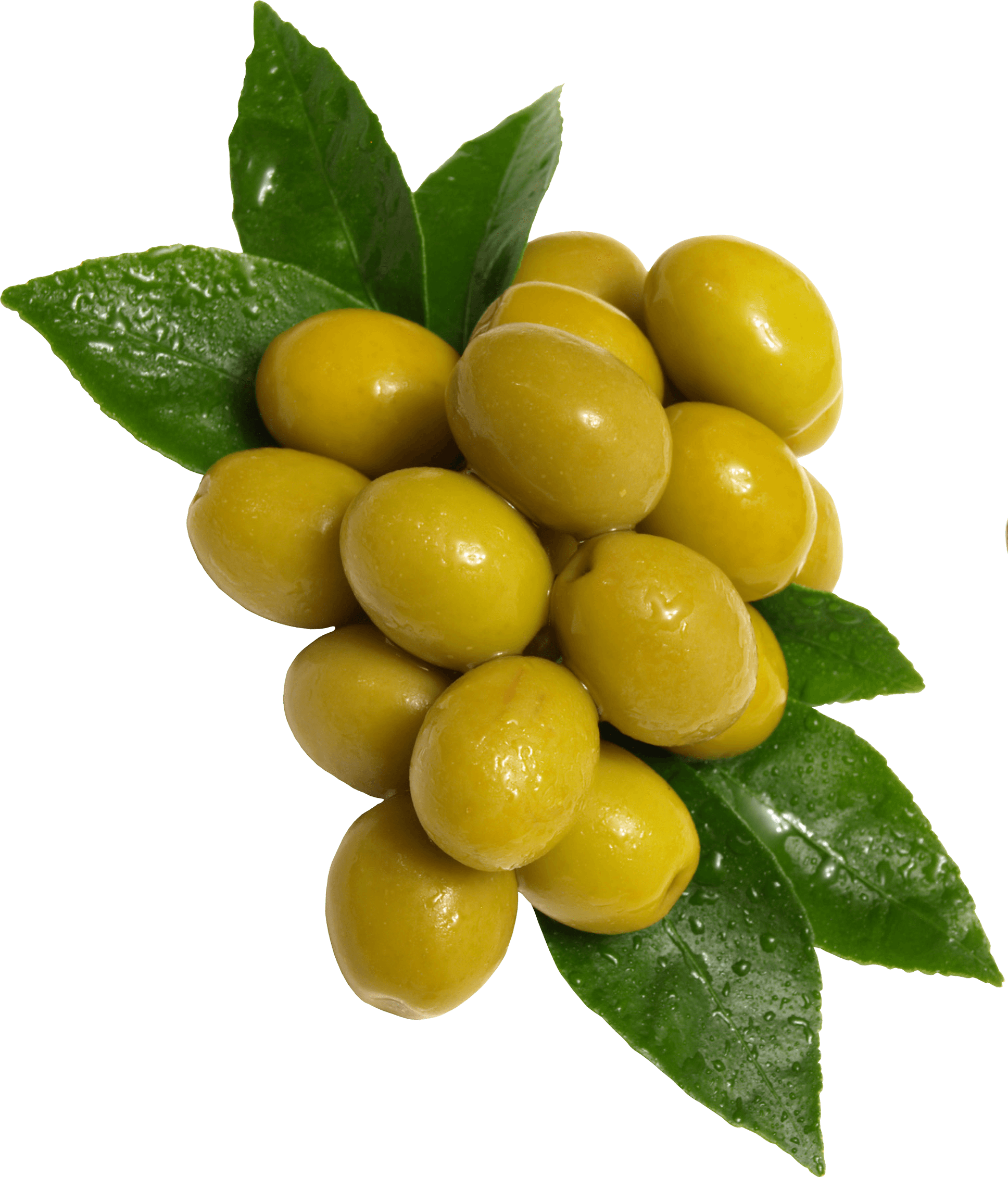 green olives transparent png stickpng #30058
