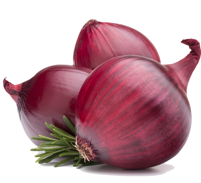download red onion png image pngimg #22195
