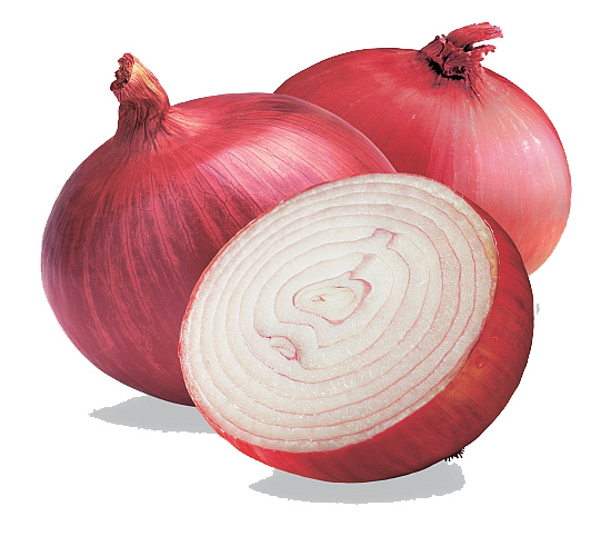 picture download onion icons and png backgrounds #22105