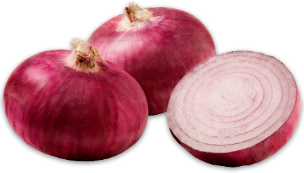 red onion #22156