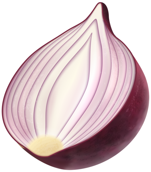 red onion png clip art image gallery yopriceville high #22117