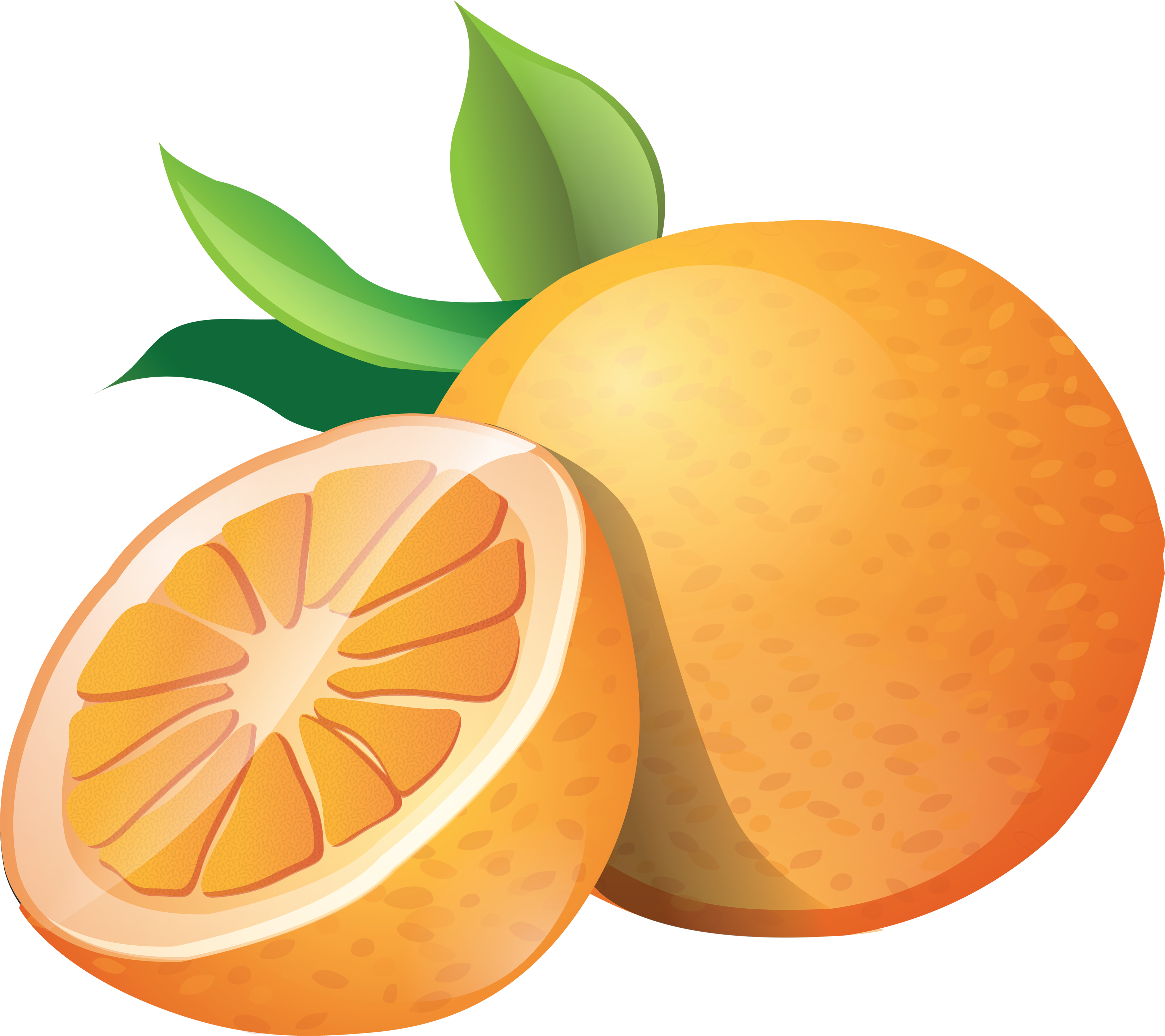 orange clipart clip art orange clipart #15351
