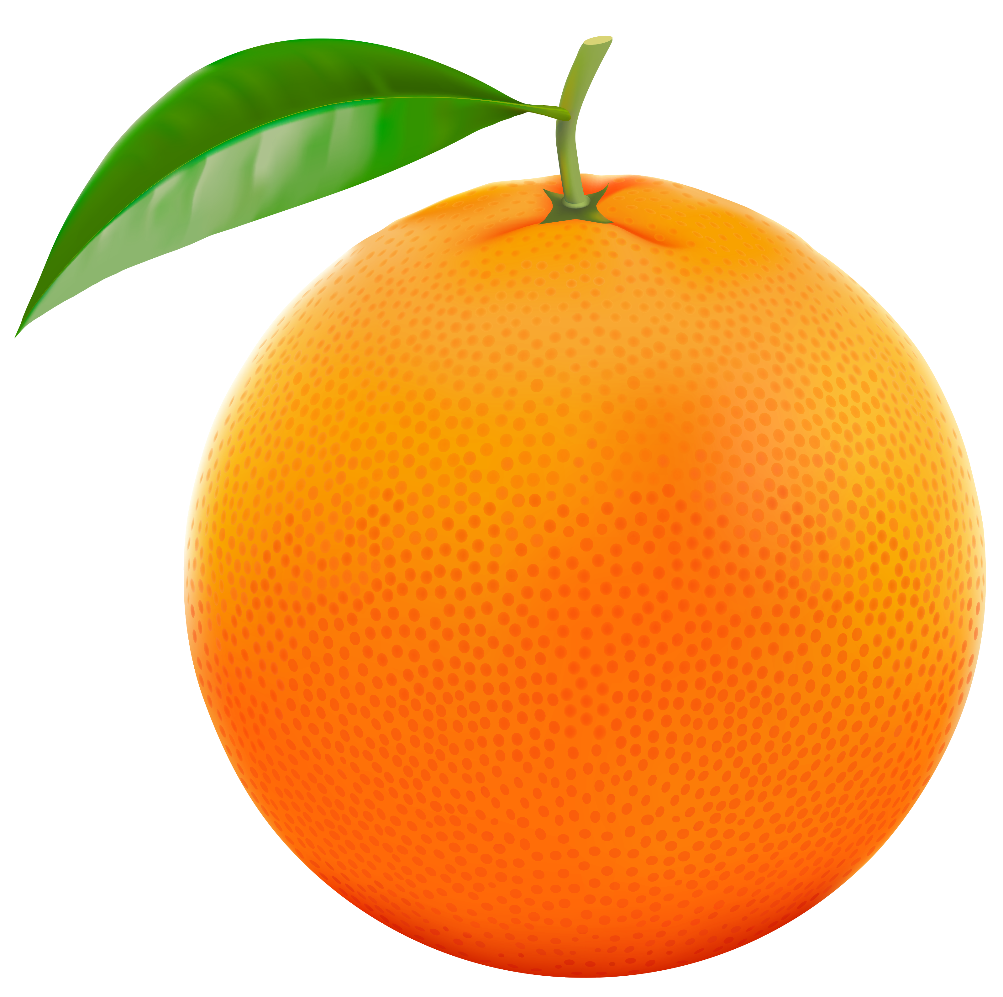 orange clipart transparent clipground #15311