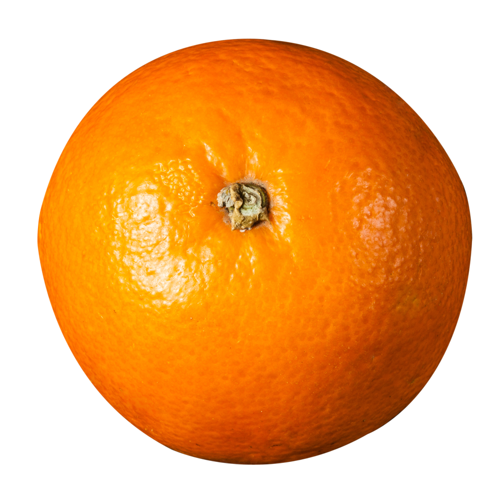 orange top view png image pngpix #15291