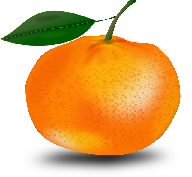 tangerine orange mandarin vector graphic pixabay #15347