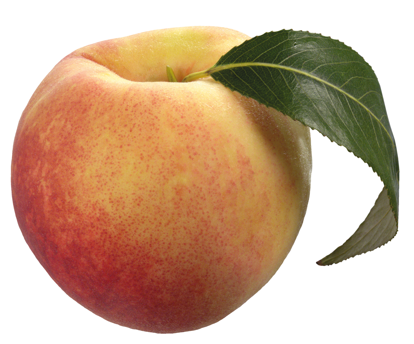 download peach download png transparent png #34573