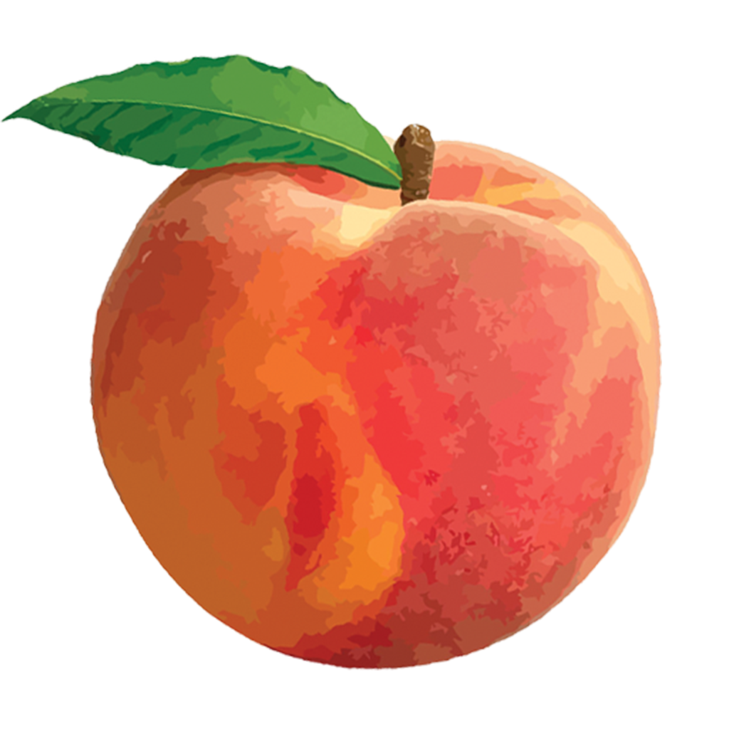 download peach png png image pngimg #34497
