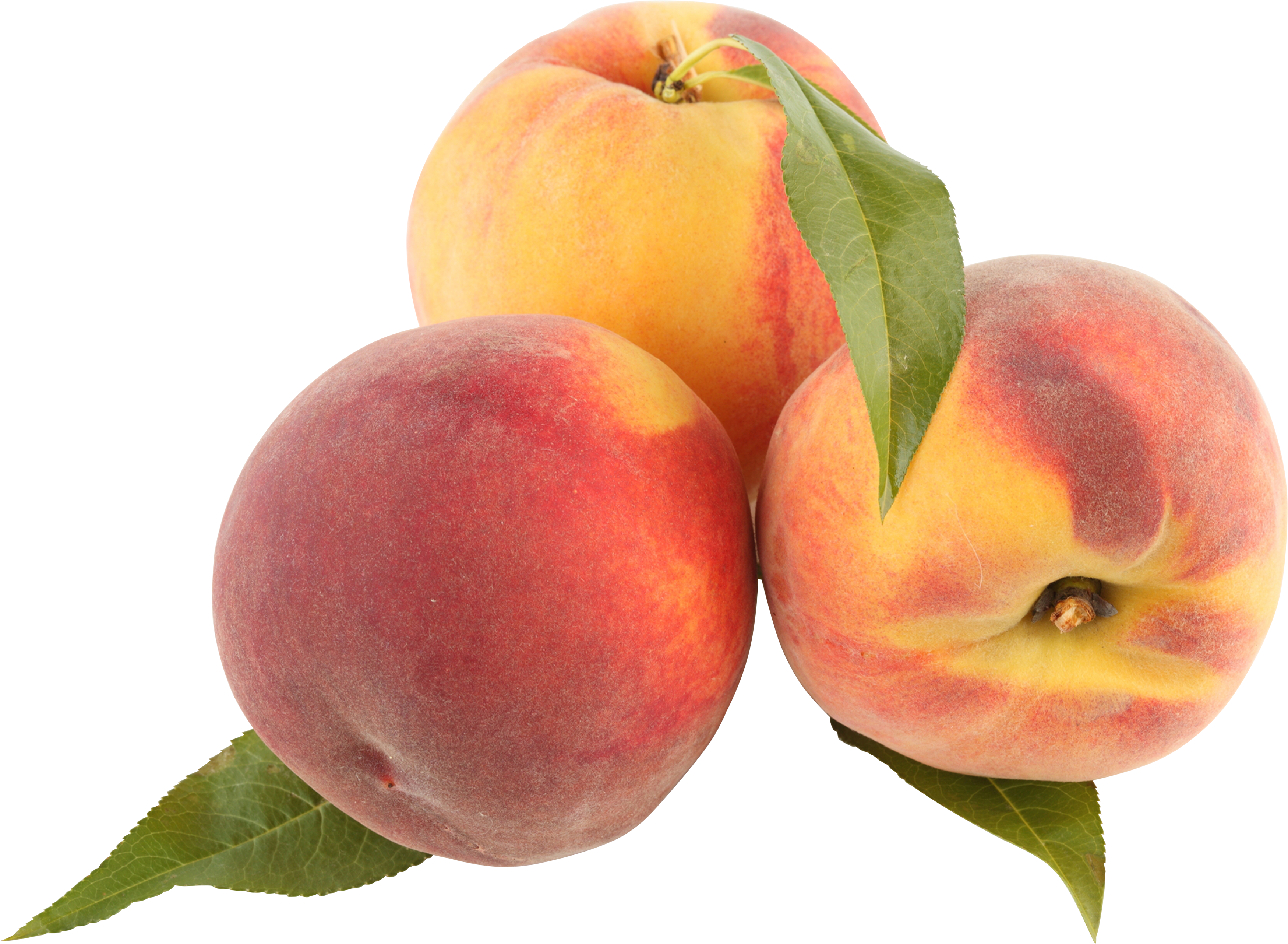 peach peaches png image purepng transparent png #34488