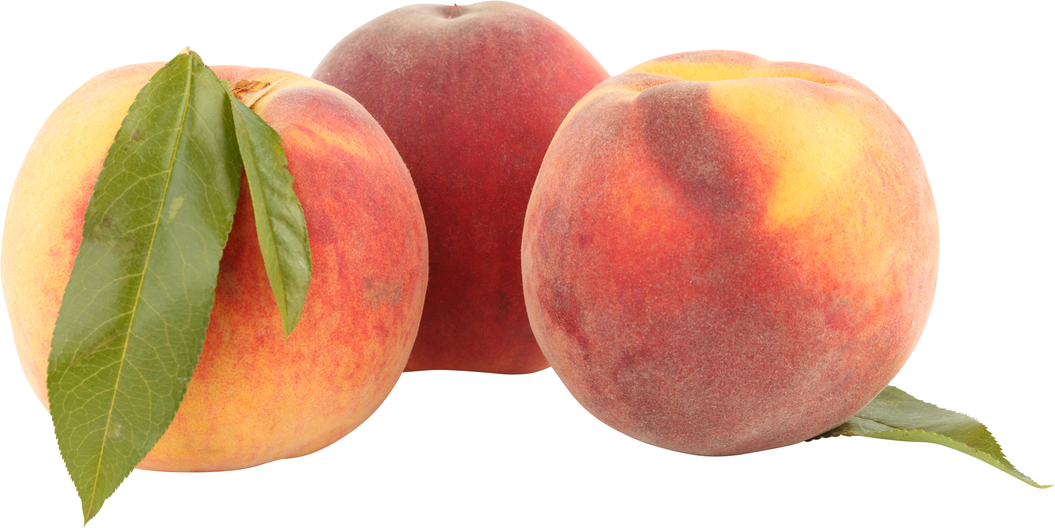 peach png image for download crazypngm crazy #34567