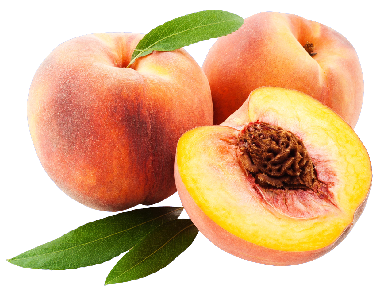 peach png image purepng transparent png image #34487