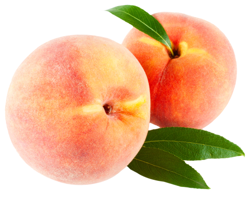 peach with leaves png image pngpix #34564