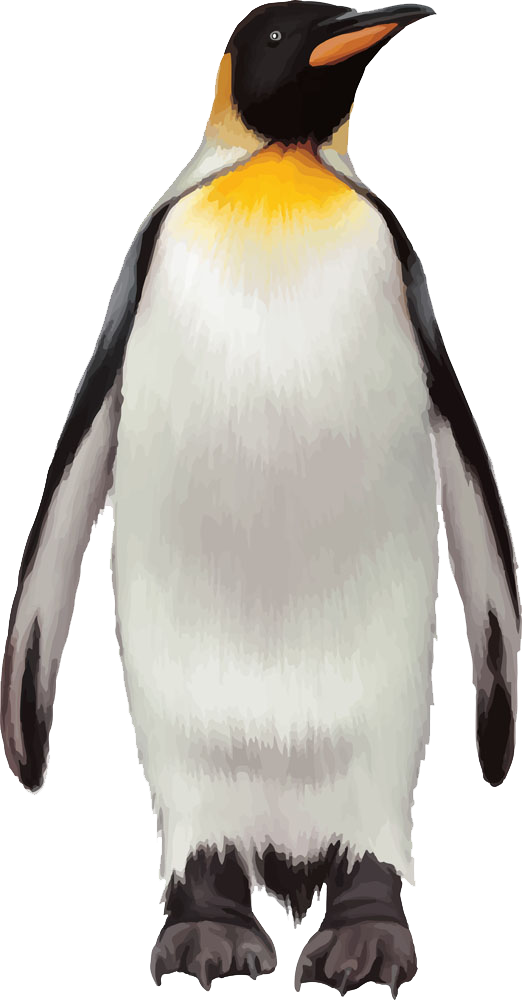 penguin transparent background png png arts #35604
