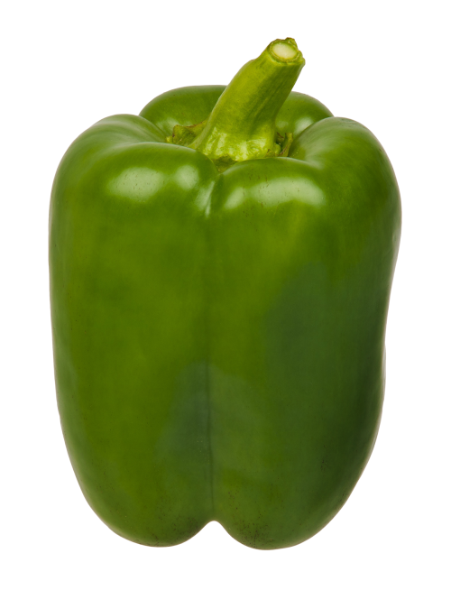 green bell pepper png image pngpix 22983