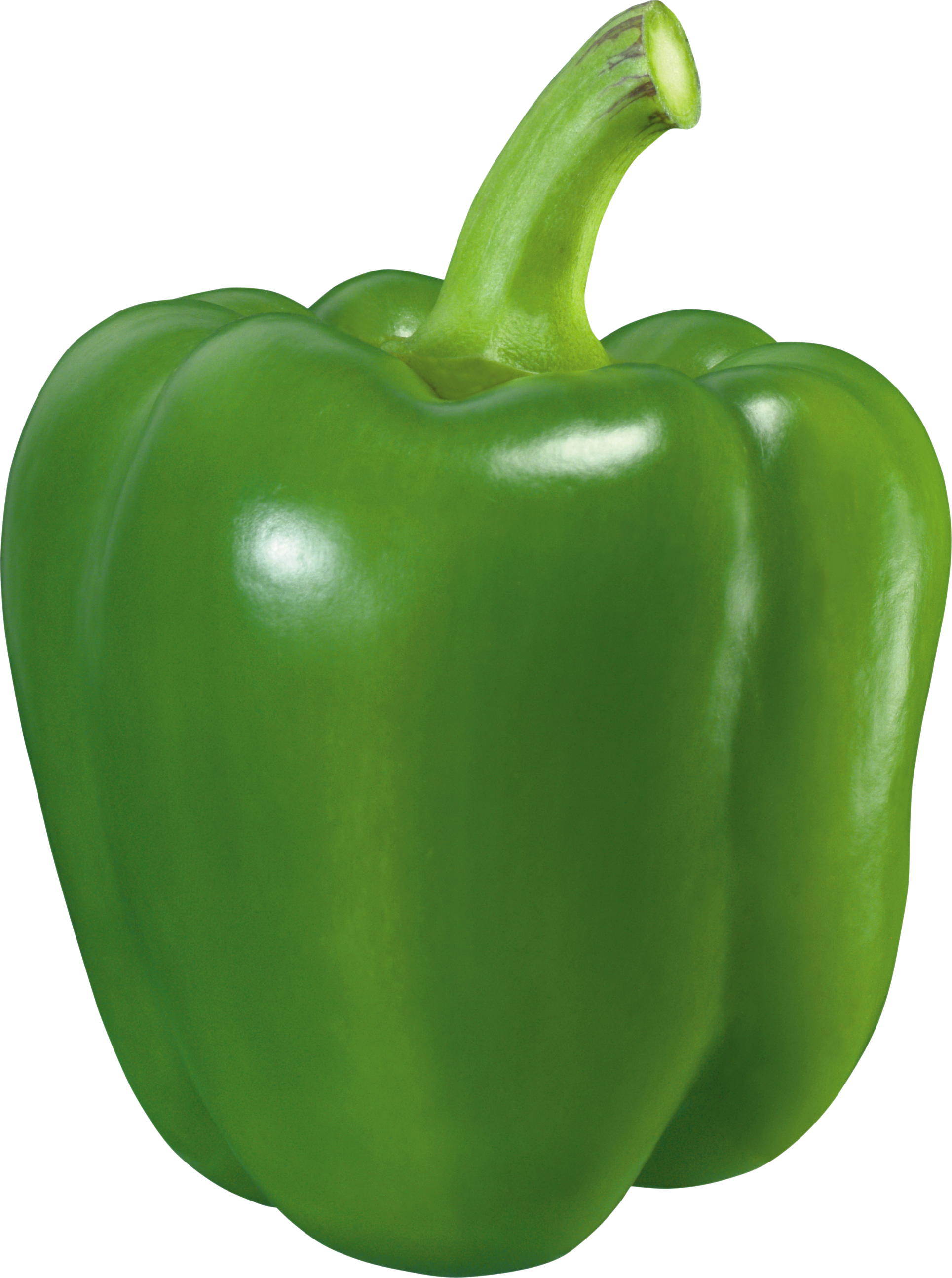 green pepper png image purepng transparent #22932