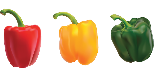 peppers bell pepper sweet vector graphic pixabay