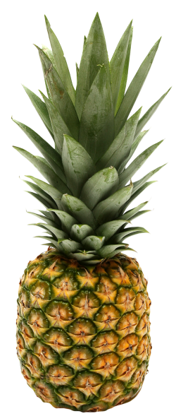 pineapple, ananas png images pngpix #18406
