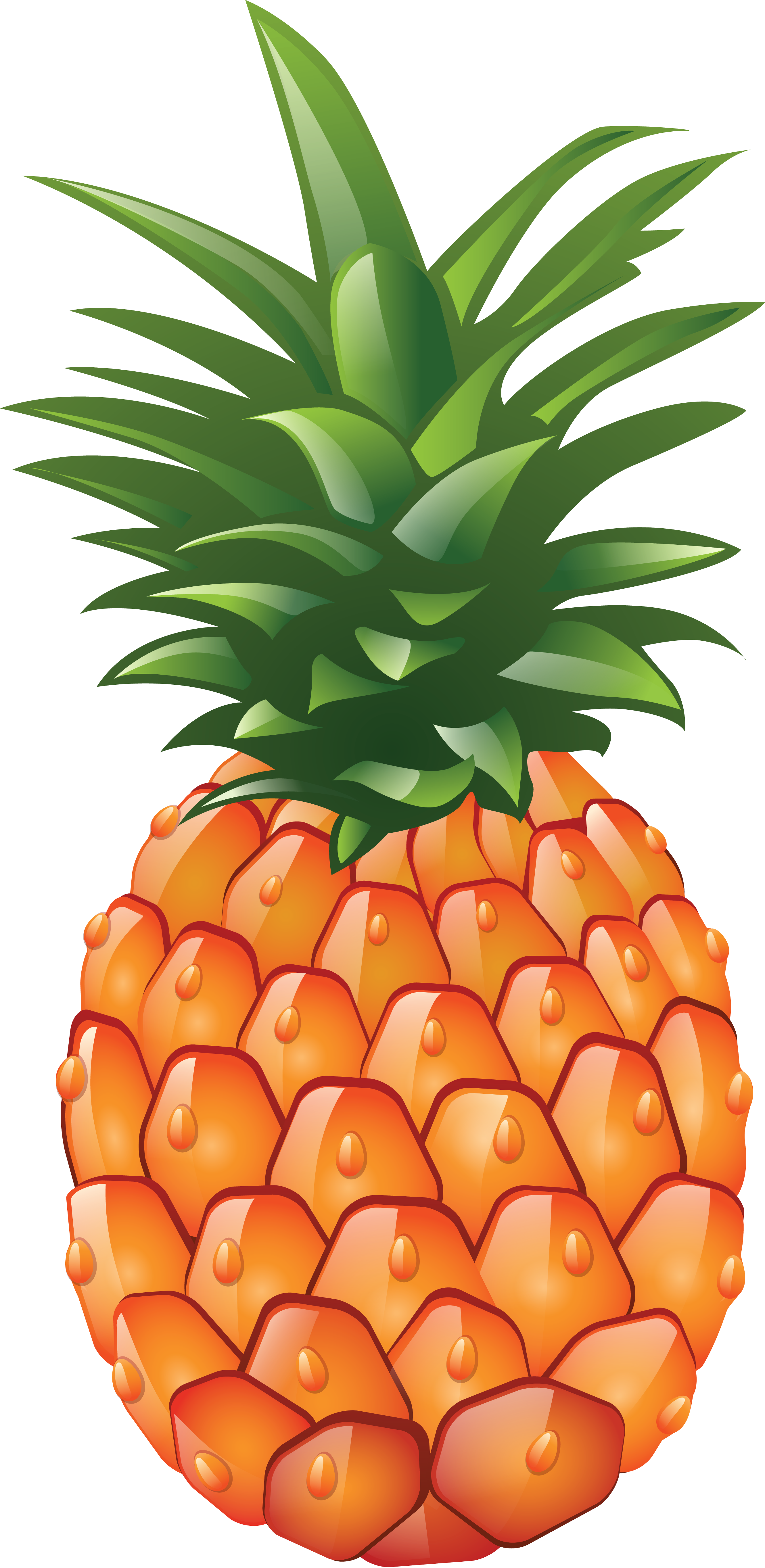 pineapple png image download cliparts #18437