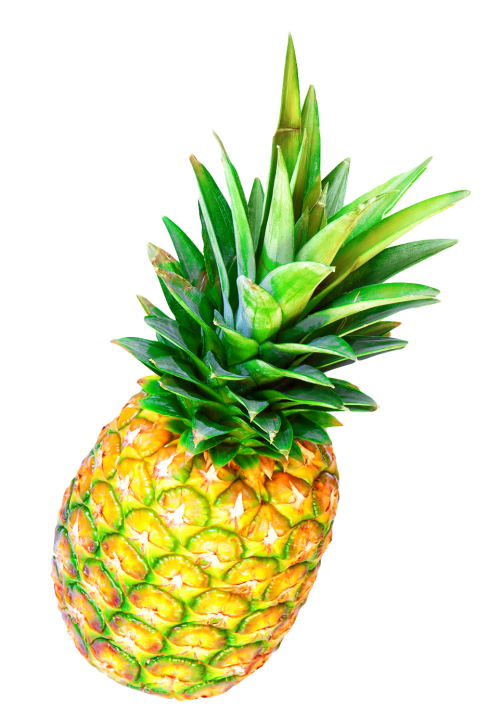 pineapple png image pngpix #18367