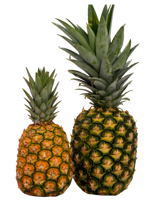 pineapple png image pngpix #18374