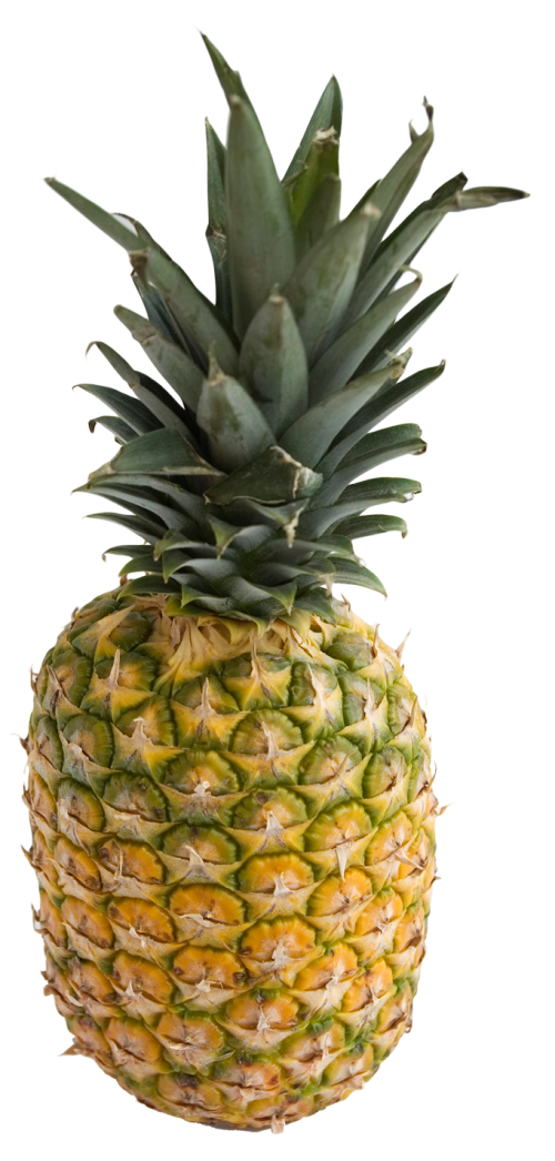 pineapple png image pngpix #18378