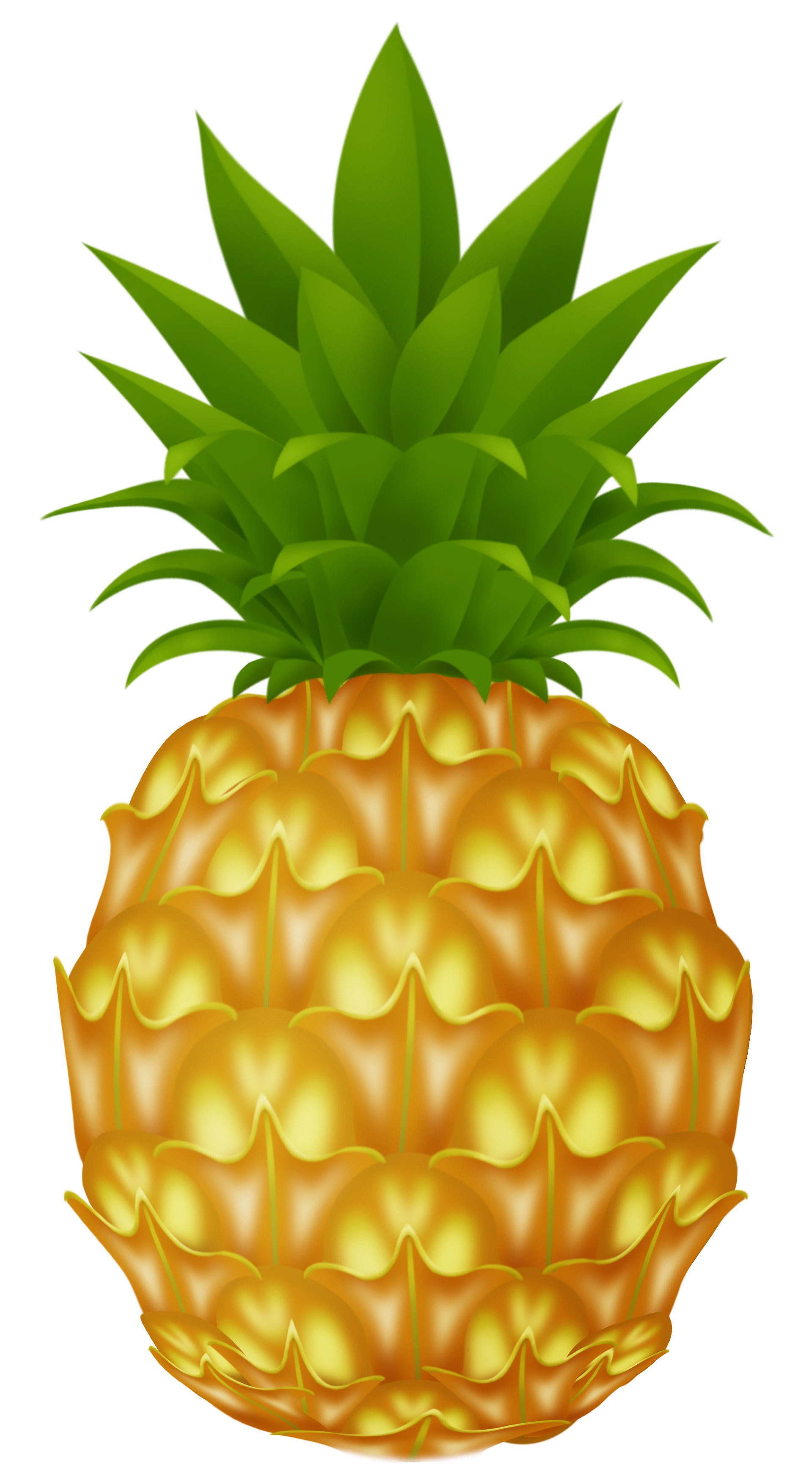pineapple png picture clipart best clipart best #18435