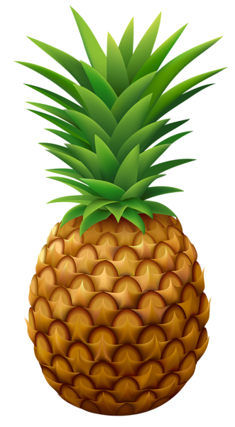 pineapple png vector clipart image gallery yopriceville #18410