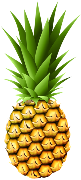 pineapple transparent png clip art image gallery #18426