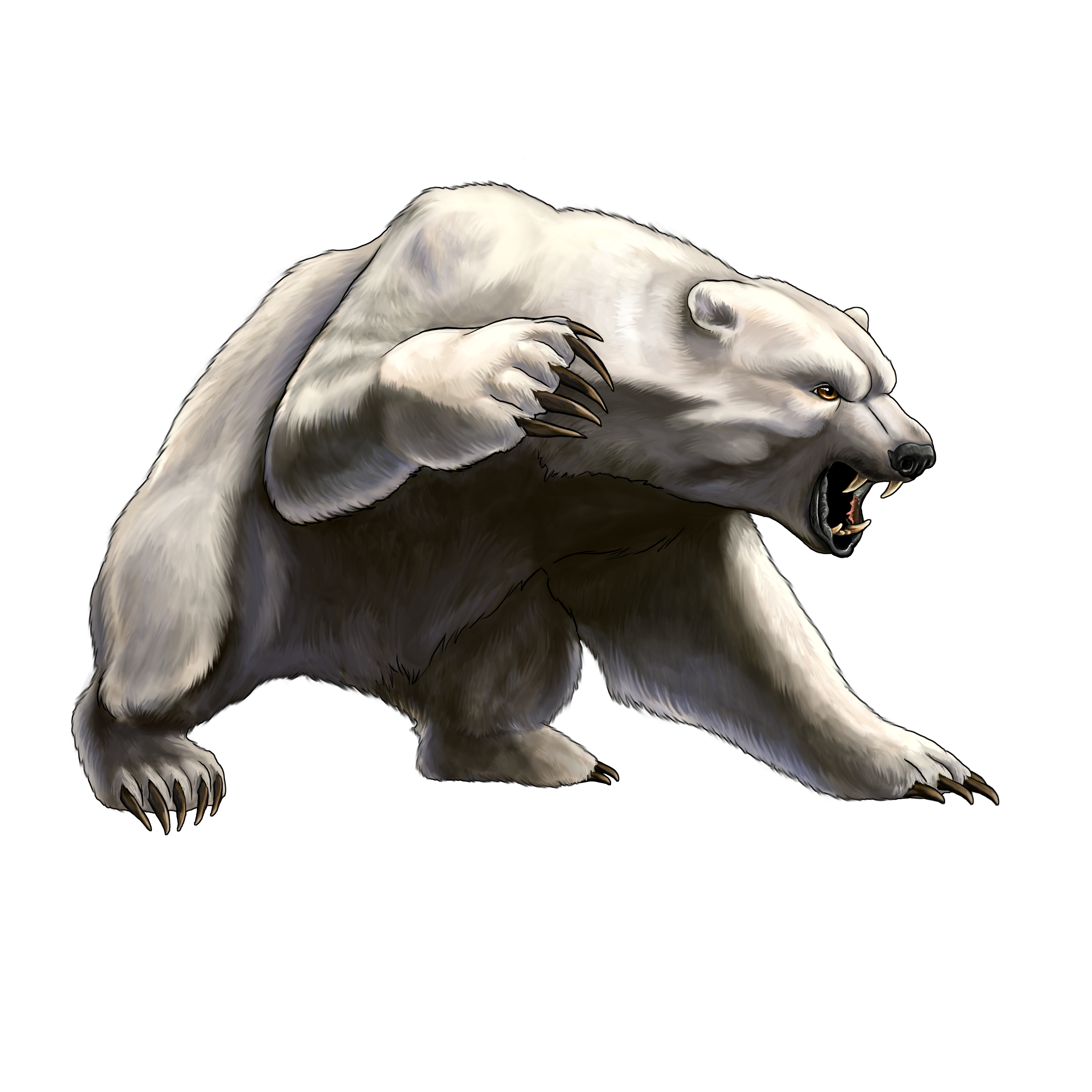 download polar bear png transparent images transparent backgrounds pngriver com sun bear #29807