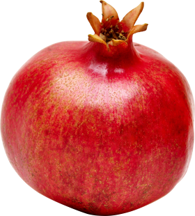 background pomegranate png transparent 24587