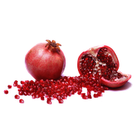 download pomegranate png photo images and clipart #24461