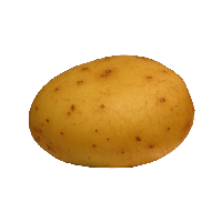 download potato png photo images and clipart pngimg #18102