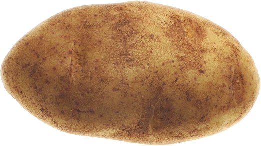 potato png transparent images png only #18133