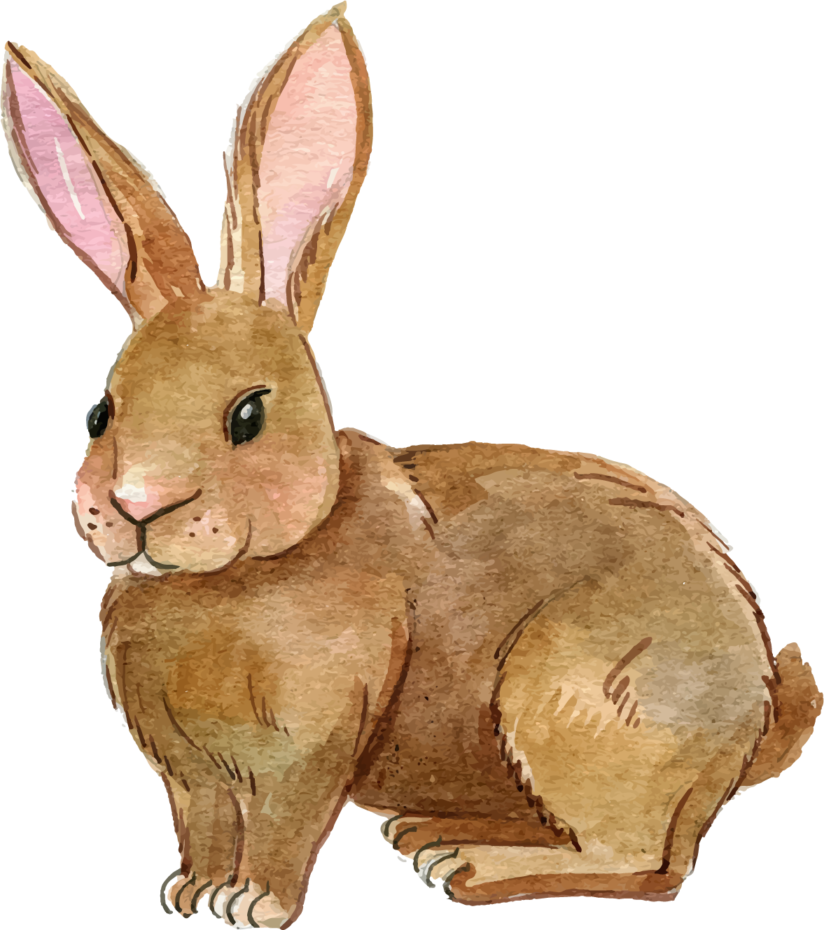 rabbit png transparent images png only #16968