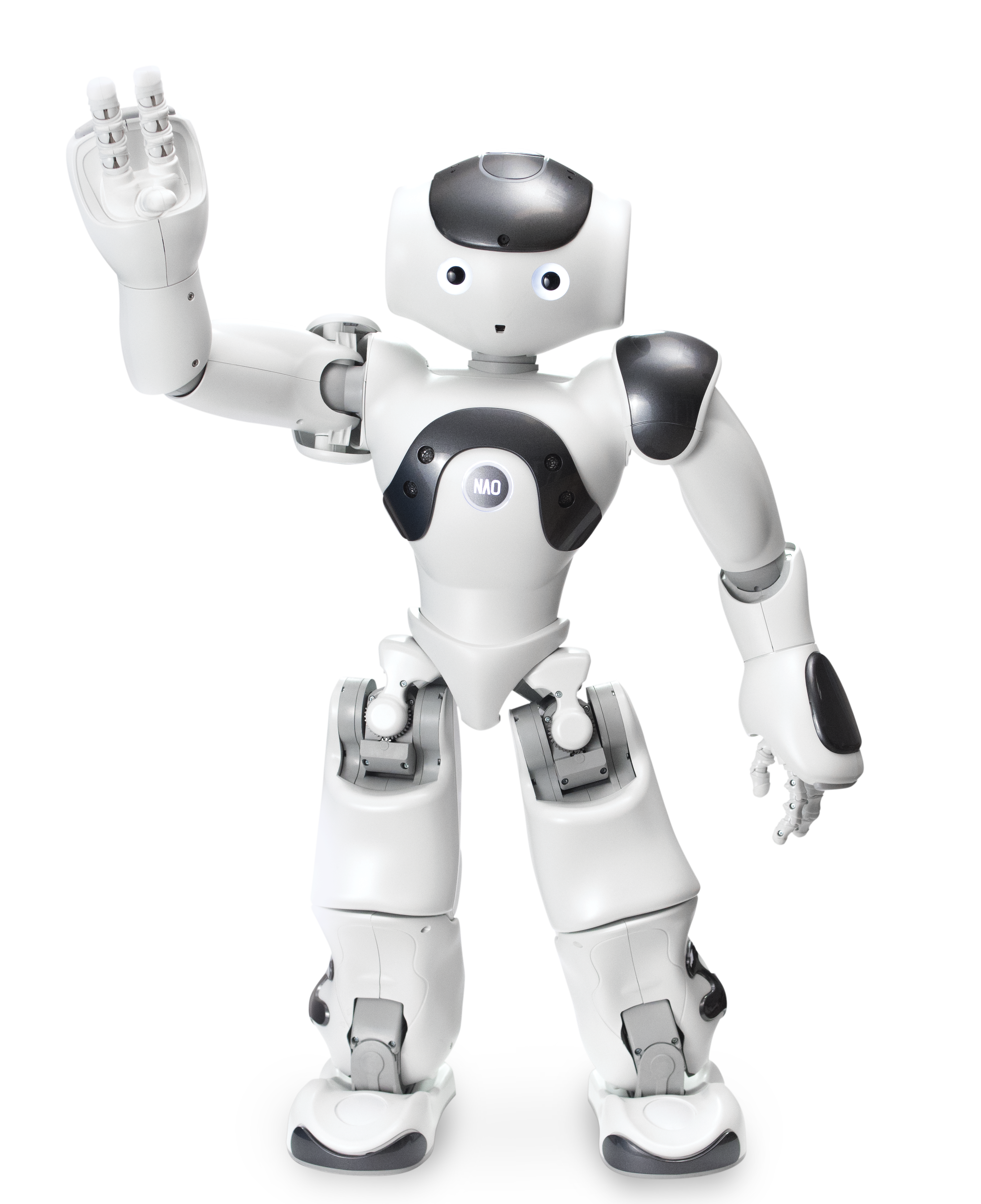 robot, nao power standard edition #18832