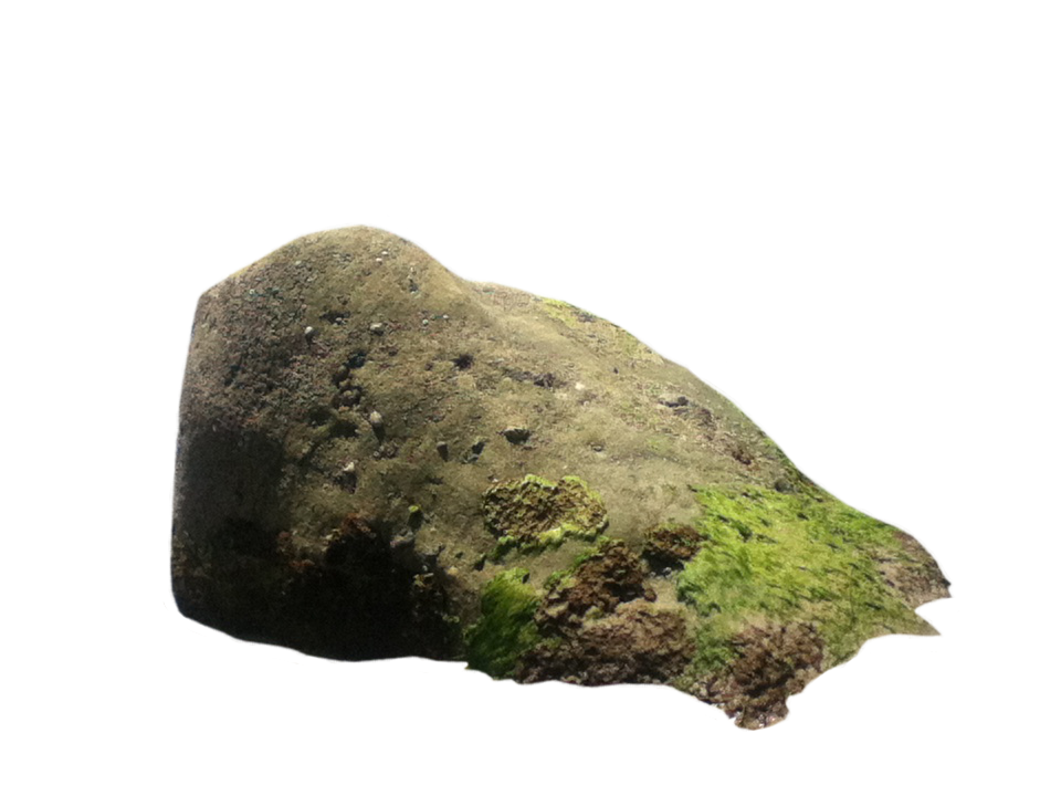 sea rock png irisuimages deviantart 11415