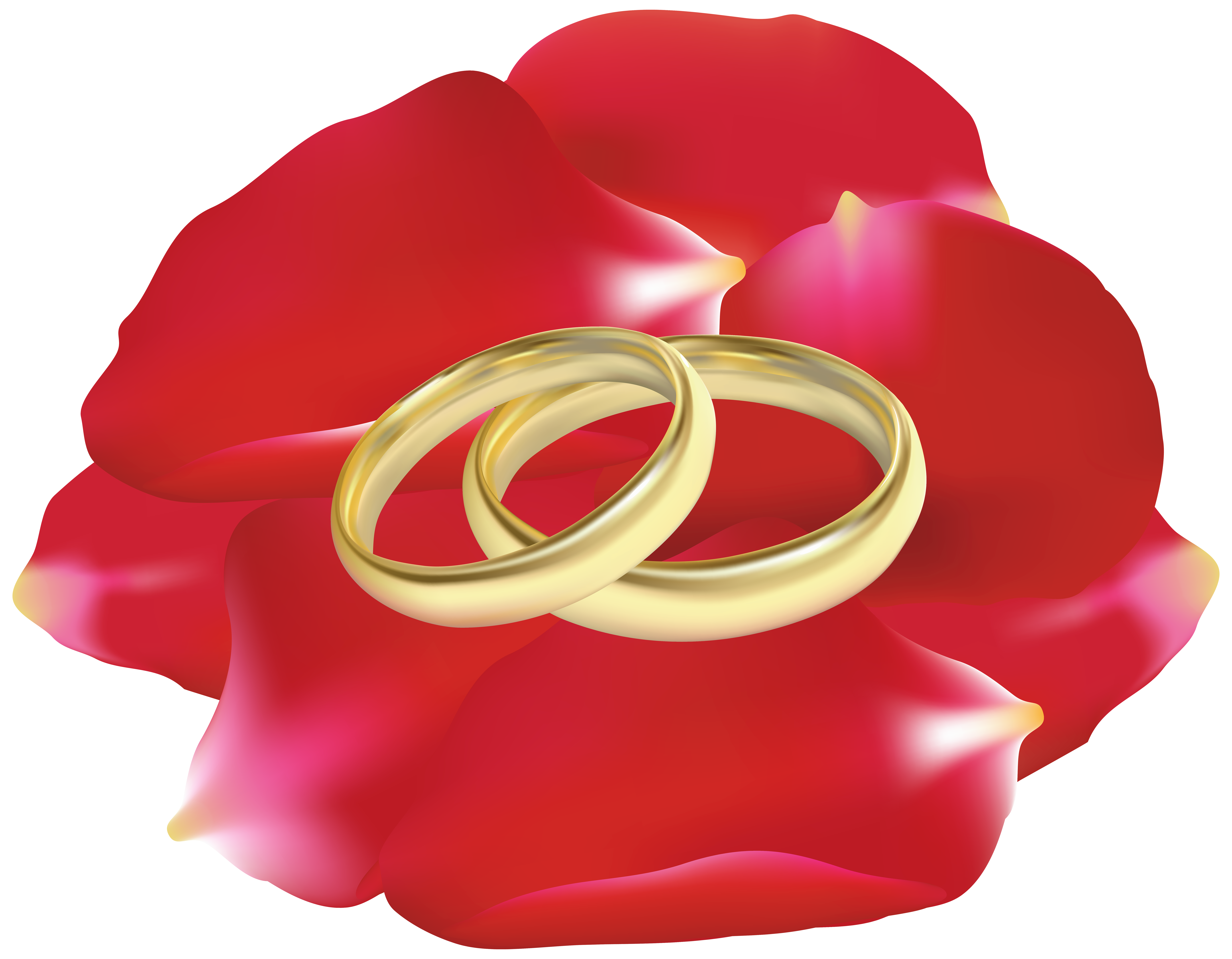wedding rings rose petals png clip art best web clipart #31016