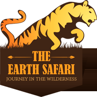 safari forests india logo the earth safari #39684