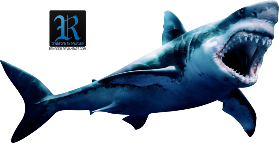 render shark renegdr deviantart #8524