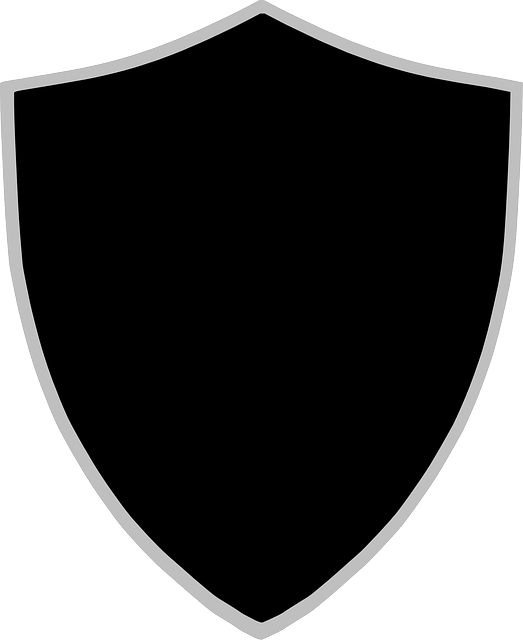 shield sign protection vector graphic pixabay #22839