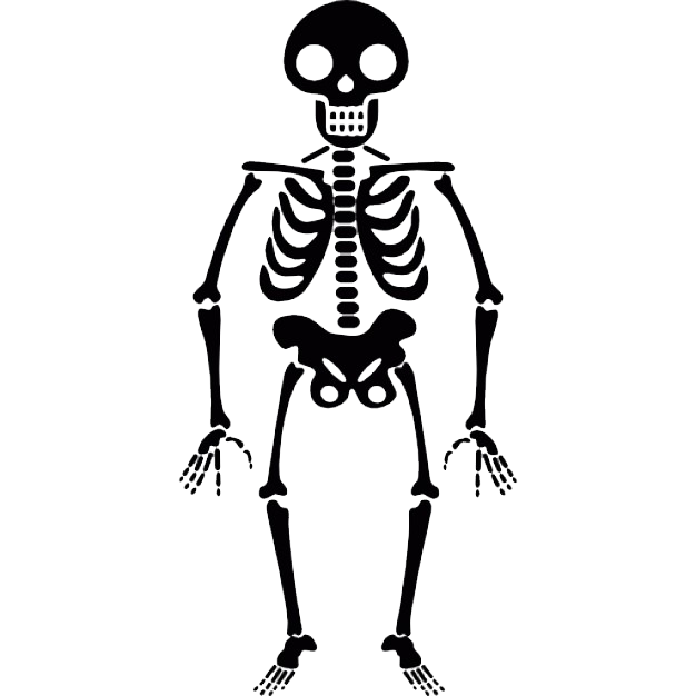 download halloween skeleton transparent png image #24793